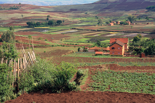 Madagascar: Typical Rural Countryside